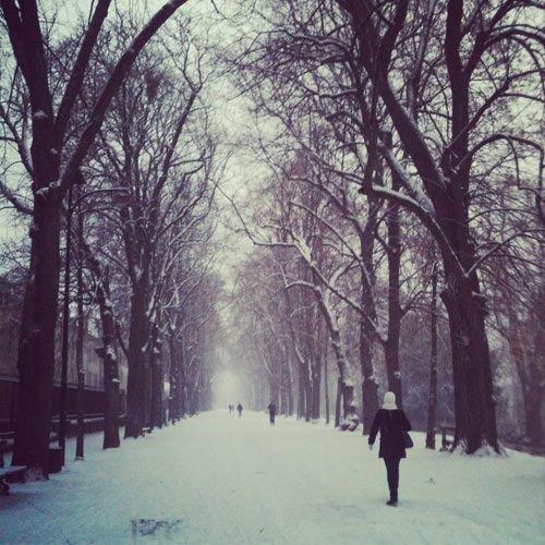 Ville de Nancy - La Pépinière sous la neige