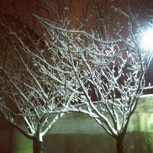 Ville de Nancy sous la neige - Silhouettes urbaines nocturnes