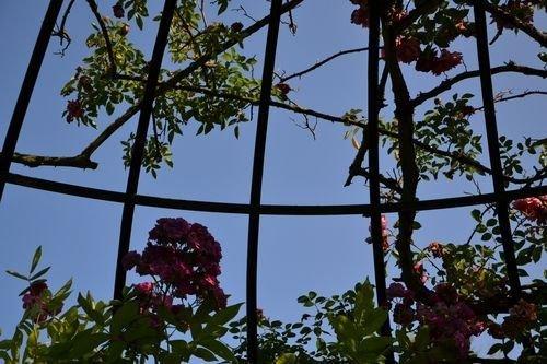 Ville de Nancy - Jardin Botanique du Montet