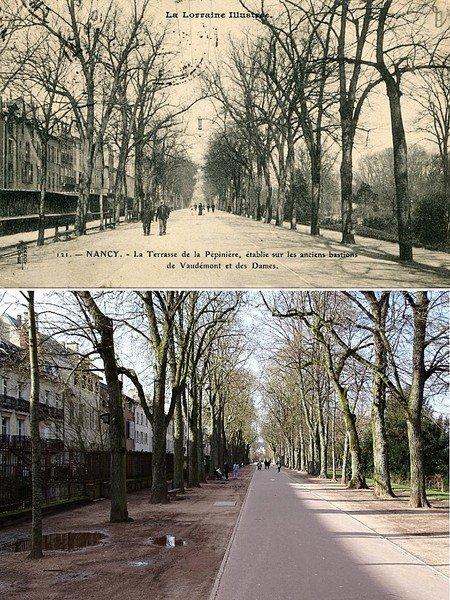 Ville de Nancy - Terrasses de la pépinière