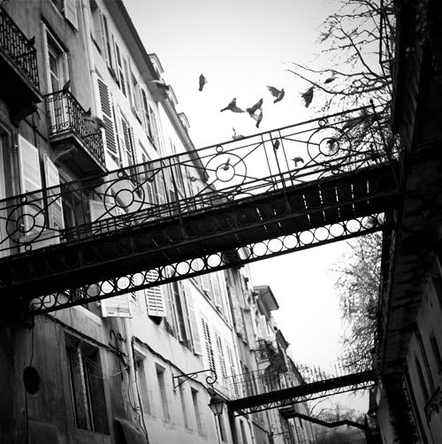Ville de Nancy - L'échappée belle