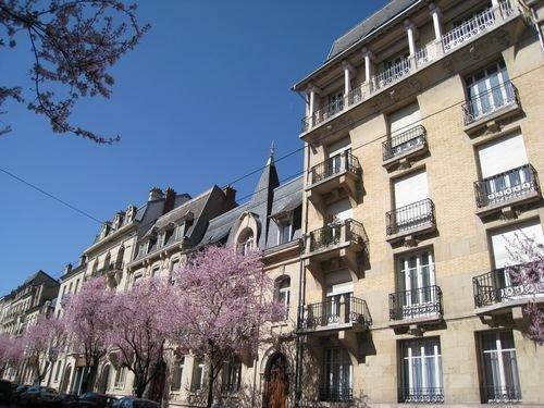 Ville de Nancy - Le printemps s'éveille