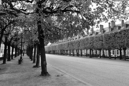 Ville de Nancy - Place Carrière