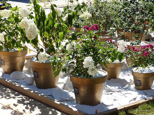 Ville de Nancy - Installation du jardin éphemère