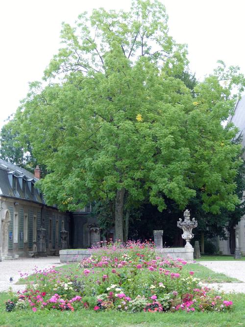 Ville de Nancy - La cour du musée Lorrain