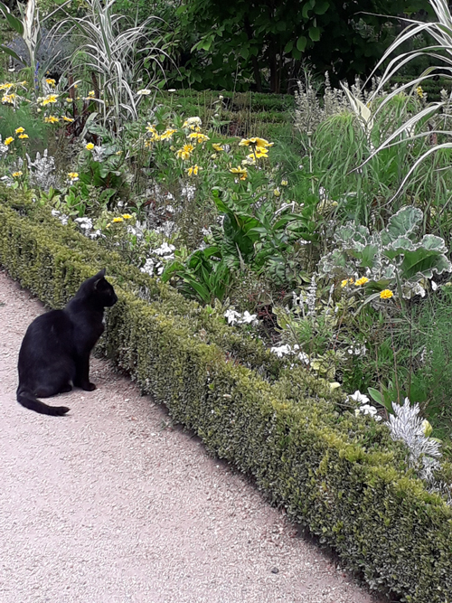 Ville de Nancy - Chat au jardin Godron