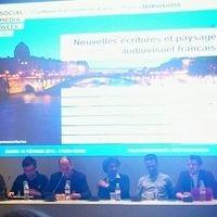 Nouvelles écritures web et paysage audiovisuel français